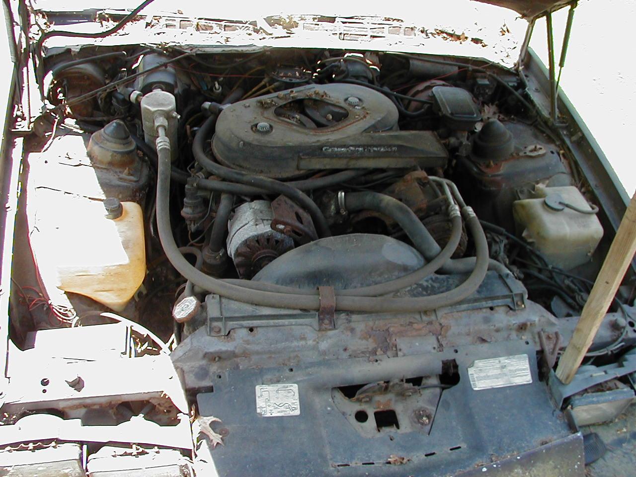 John In Ri White 1983 Camaro Z28